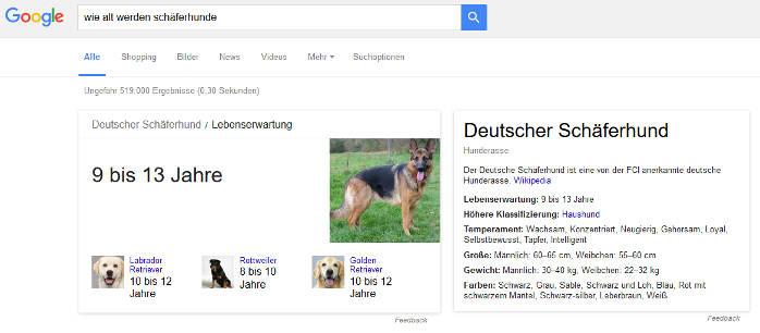 Lexikon Google Suche Hunde Alter